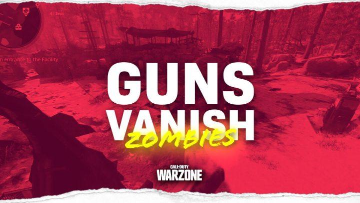 Black Ops Cold War Zombies Glitch Guns Vanish