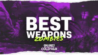 Firebase Z Best Weapons Cold War Zombies